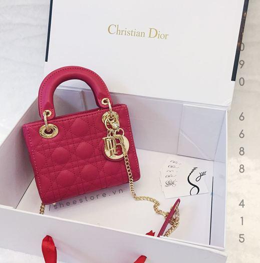 Túi xách thương hiệu Dior